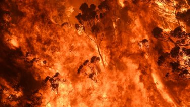 The evidence linking bushfires to climate change is overwhelming.