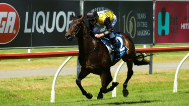 Jonker will  be out to keep The Hunter cash in Newcastle.