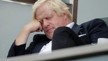 Johnson dozes off at the cricket last year.