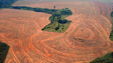 Aereal view of an area deforestated by soybean farmers in Novo Progreso, Para, Brazil, in 2004.