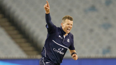 Keeping pace: Veteran Peter Siddle continues to shine with the ball.