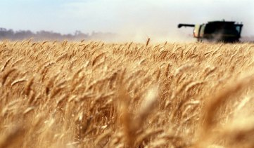 Grain farmers could support LTAP's proposed takeover of Graincorp.