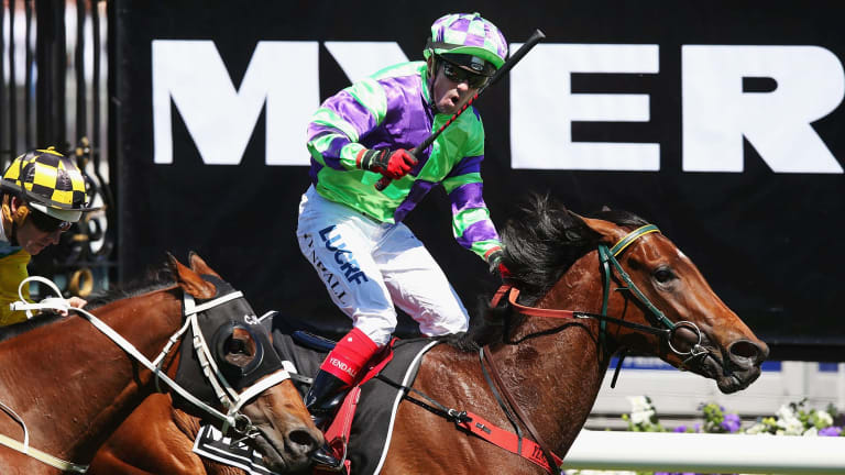 Shooting star: I Am A Star is back in the same shape as when she wotn the 2016 Myer Classic