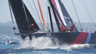 Under repair: Scallywag at the start of the Sydney to Hobart race, before it sustained damage.