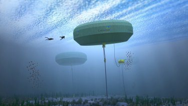 The Albany wave power project has come under question.