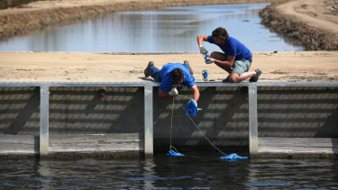 Water samples are taken for testing from a canal near Bakersfield, California, in 2015.