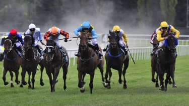 Racing returns to Gosford on Thursday with an attractive eight-race card.