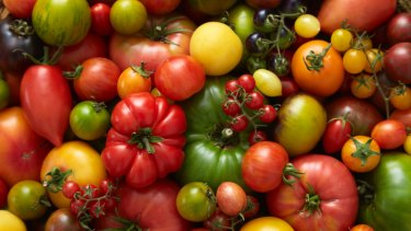Assorted varieties, from Tomato: know, sow, grow, feast. Photo: Kirsten Bresciani