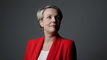 Tanya Plibersek has been in Parliament for more than 20 years and was Labor's deputy leader for six years.