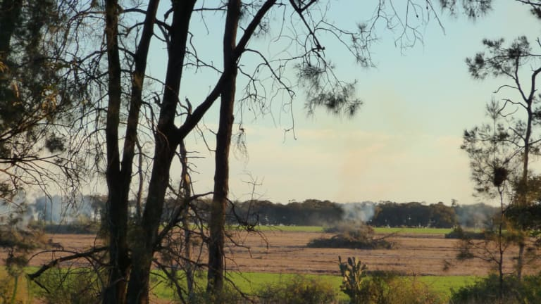 Land clearing has been an ongoing issue in northern NSW, including in the region where Glen Turner, on OEH officer, was murdered by a farmer in 2014.