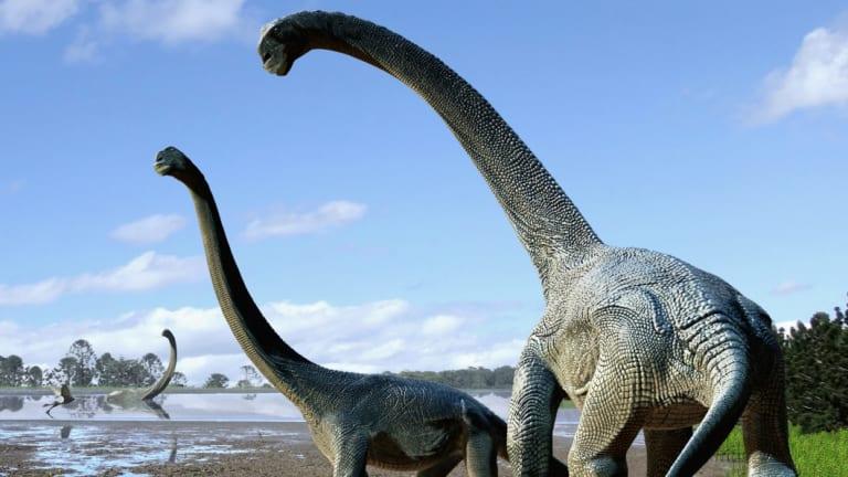 An artist's image of savannasaur dinosaurs.