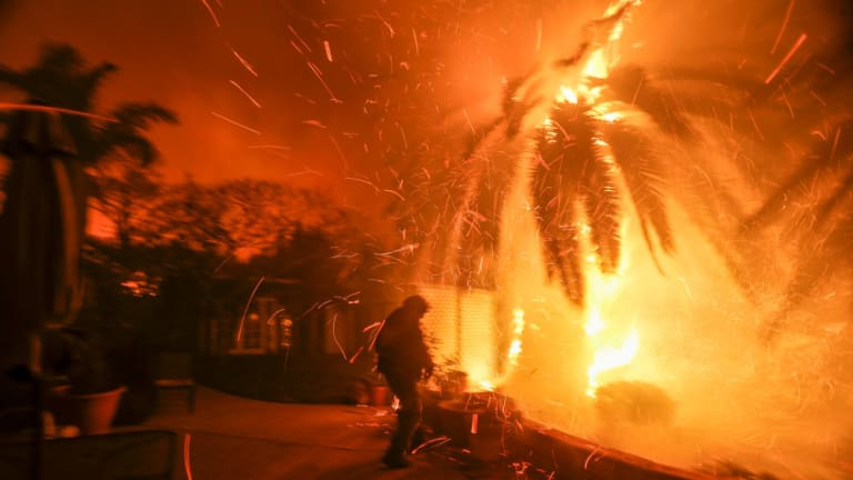 California burning: Tim Billow, 62, tries to save his plantings in his backyard as the Woolsey Fire burns in Malibu earlier this month.