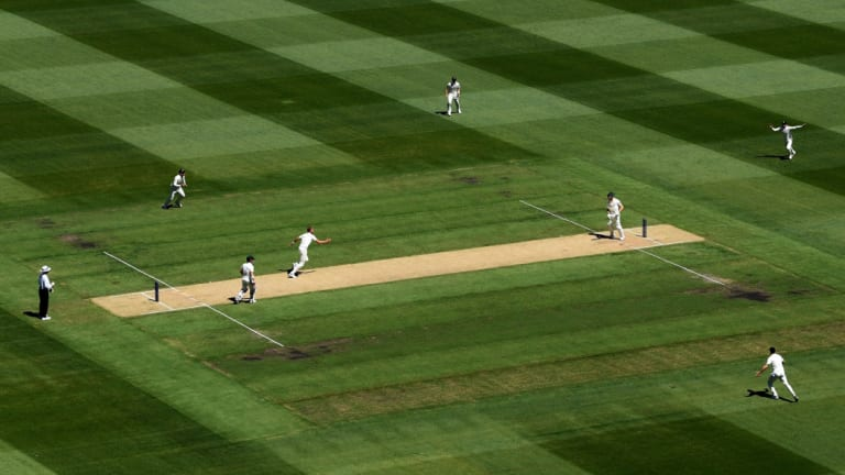 The MCG pitch last summer.