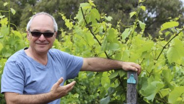 Will Berliner from Cloudburst has shaken up winemaking among the elite in Margaret River since his arrival.