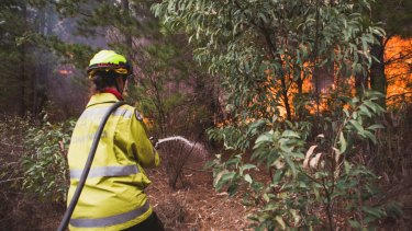An out of control bushfire at Pierces Creek , and watch and act is in place.  Photo: Jamila Toderas