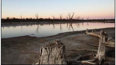In the last big dry the Murray River was reduced to a fraction of its normal flow.