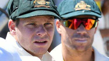 Ban over: Steve Smith and David Warner have completed their 12-month suspensions for their roles in the ball tampering plot.