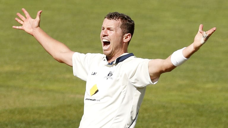 Peter Siddle is back in the Test side.