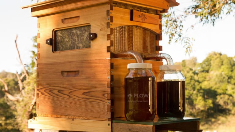 A western red cedar Flow™ Hive Classic, made for the American market.