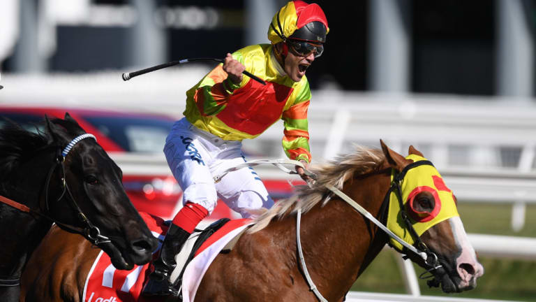 Michael Walker and Mighty Boss stun punters in last year's Caulfield Guineas.