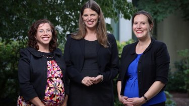 Labor MPs Amanda Rishworth and Kate Ellis and Liberal MP Kelly O'Dwyer were all pregnant with their first babies in 2015.