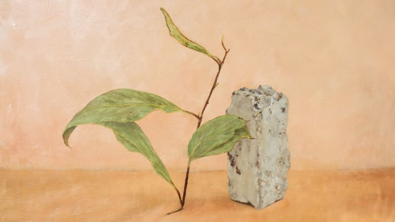 <p>Hayley Lander, <i>The new nature</i> in <i>Softly Calling</i> at Form Studio and Gallery. </p>