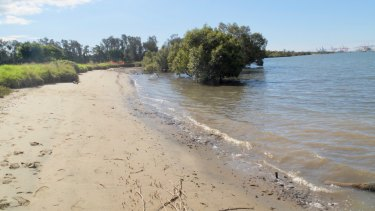 The beach at Myrtletown, with Port of Brisbane cranes as a background, is a beach of sorts.