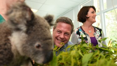 Tim Nicholls, Jann Stuckey and 'Tac' the koala at the Currumbin Wildlife Hospital in November 2017.