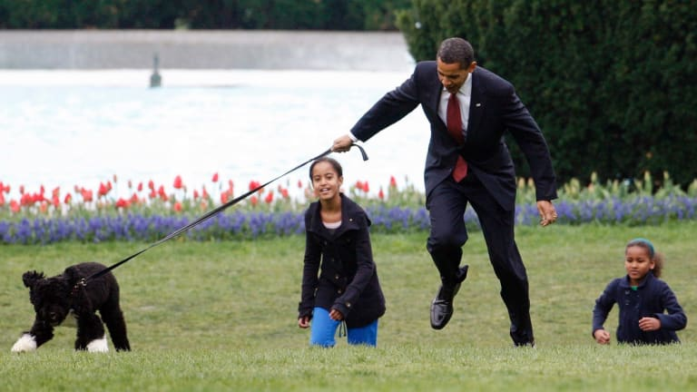 Former president Barack Obama is almost jerked off his feet as he shows off Bo, a Portuguese water dog with his daughters Malia, left, and Sasha, right, at the White House in 2009.