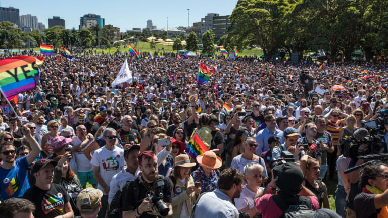 'Yes' voters celebrate at Prince Alfred Park in November last year.