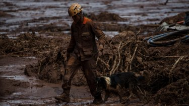 A rescue worker leads a dog through the damage after the Vale dam burst.
