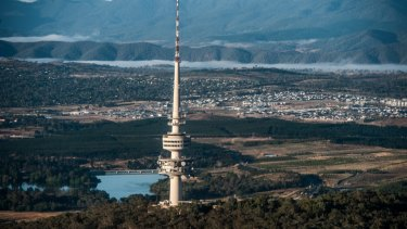 Canberra's urban forest is declining by thousands of trees per year.