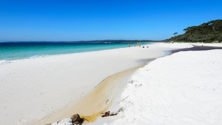 Toxic chemicals have been found in the pristine waters of Jervis Bay.