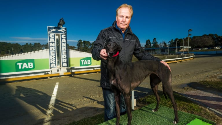 Canberra Greyhound Club president Alan Tutt has vowed to bring racing back to the ACT.