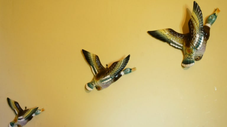 Every kitchen in Australia seemed to have these three ceramic flying ducks on the wall in the '70s.
