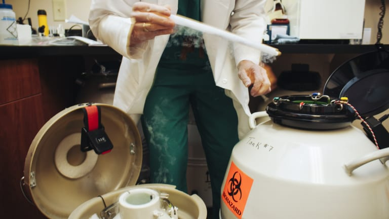 An embryologist transfers frozen embryos at the National Embryo Donation Centre in Knoxville, Tennessee.