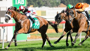 Paul Jones star gelding Almost Court takes out the Canberra Cup in March.