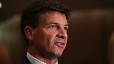 "Federal energy minister Angus Taylor said the default offer ""will act as a price safety net""."