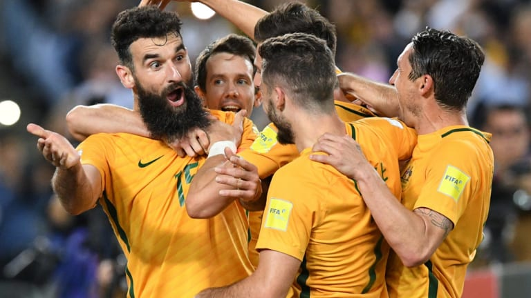 Ready for Russia: Socceroos captain Mile Jedinak, left, was disappointed with the team's showing at the 2014 World Cup.