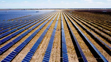 Moree solar farm in NSW.