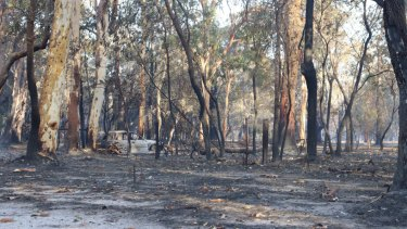 Queensland authorities declare 'state of fire emergency' in parts of state.