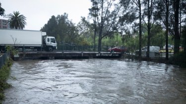 Johnstons Creek at Annandale was close to flooded on Wednesday at the peak of the rainfall.