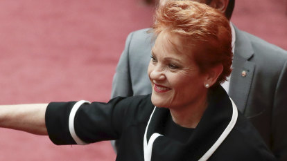 Labor to back Hanson's dairy plan in attempt to wedge Nationals