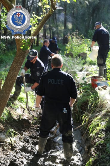 Police searching bushland at Cranebrook.