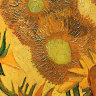 How different are van Gogh's Sunflowers? New exhibition seeks to compare