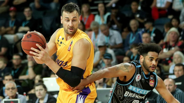 In the frame: Andrew Bogut returned season-best numbers for the Kings in their NBL win over the New Zealand Breakers.