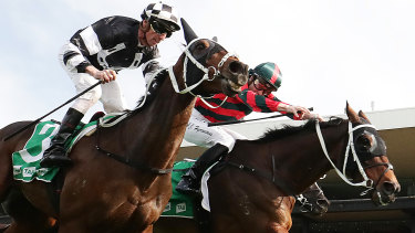 Wu Gok (right) beats stablemate Carzoff home in the Winter Cup to continue a successful campaign.