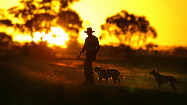 The current drought has already reduced farm output by about 6 per cent.