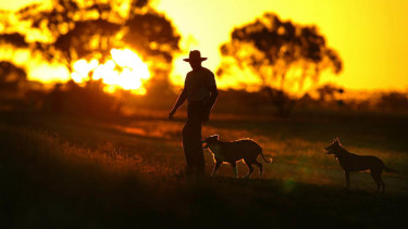 Farmers have been hit hard by drought. The Bureau of Meteorology says rainfall totals in Australia in 2018 were the lowest since 2005.