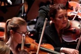 Peak arts body calls for return of funding